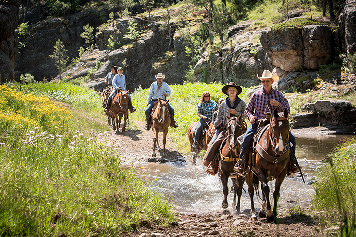 Guided Trail Rides » Activities in the Park » Activities