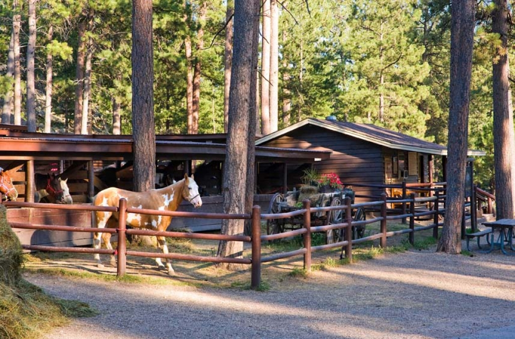 Blue Bell Stables offers guided trail rides.