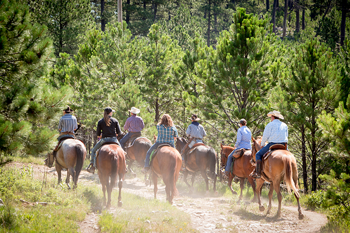 Blue Bell Lodge Trail Rides
