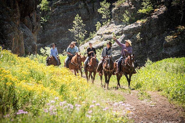People on a trail ride